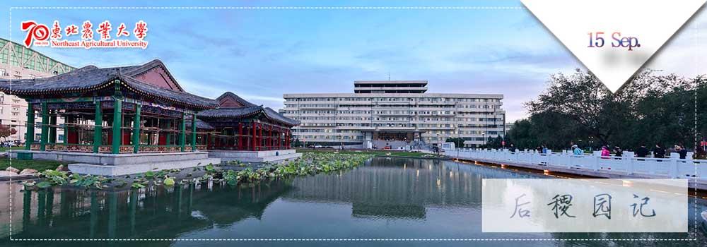 Северо-восточный сельскохозяйственный университет