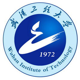 Wuhan Institute of Technology history