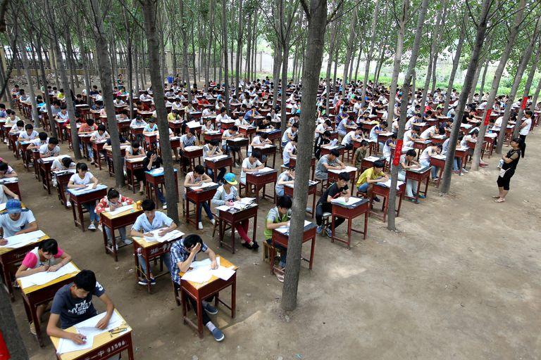 обучение в Школе Китая